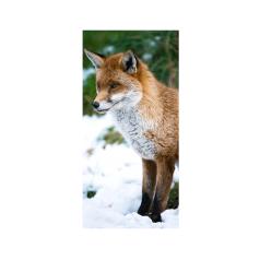 banner-fox-enkelzijdig-90-180cm-0114385.png