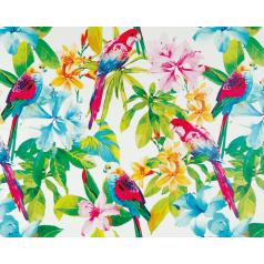 inpakpapier-papagaai-wit-30cm-0115221.png