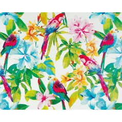 inpakpapier-papagaai-wit-50cm-0115213.png