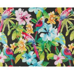 inpakpapier-papagaai-zwart-50cm-0115214.png