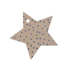 label-sparkling-star-kraft-zilver-0114395.png