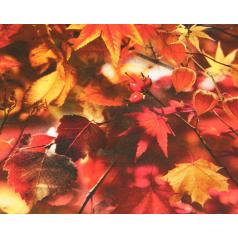 inpakpapier-autumn-leaves-30cm-0115745.png