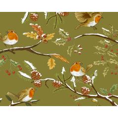 inpakpapier-birds-green-50cm-0115744.png