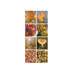banner-harvest-dubbelzijdig-75-180cm-102816.png