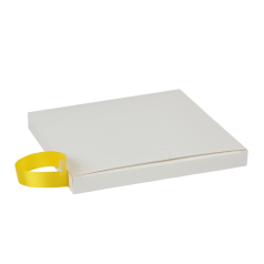satijnlint-15mm-geel-0117499.png