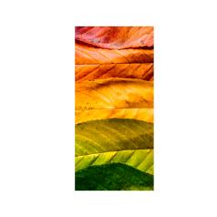 banner-seasons-enkelzijdig-0118495.png