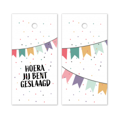 Hangkaartjes-Hoera-jij-bent-geslaagd-Slingers-gekleurd-119634.png