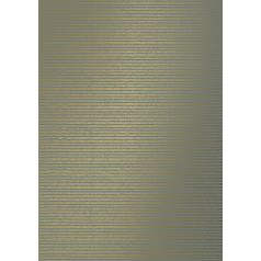 inpakpapier-horizontal-lines-grey-gold-50cm-0119248.jpg
