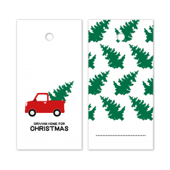 Hangkaartje-Driving-Home-For-Christmas-full-colour-0120153.png