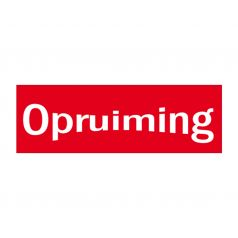 raambiljetopruiming-nl-101934.jpg