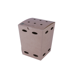 frietbox-100_-fair-small-0113061.png
