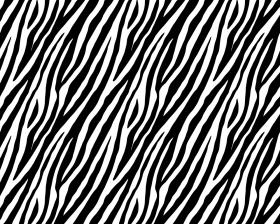 inpakpapier-looks-like-a-zebra-50cm-0115422.png