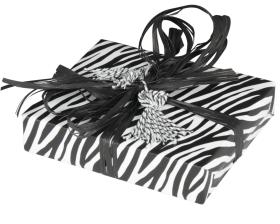 inpakpapier-looks-like-a-zebra-50cm-0115422_A.png