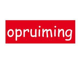 raambiljetopruiming-nl-2-101935.jpg