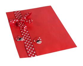 cadeauzakjes-rood-17-25cm-103451_A.png